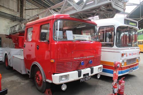 IMG 9755